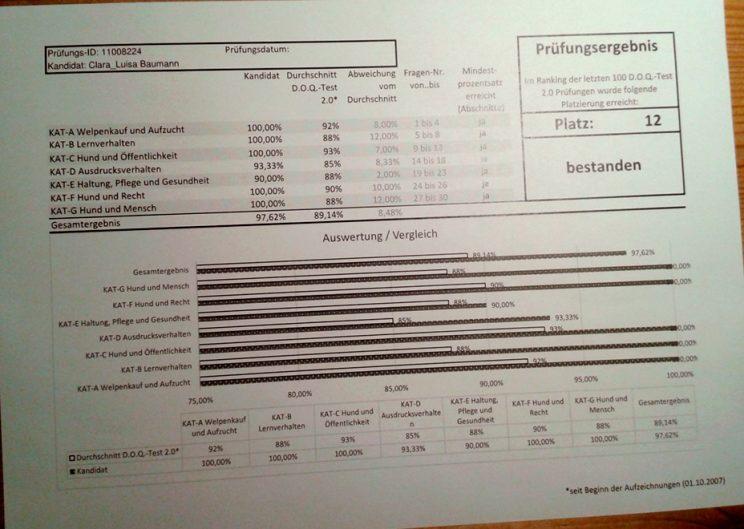 DOQ Test Theoretische Auswertung