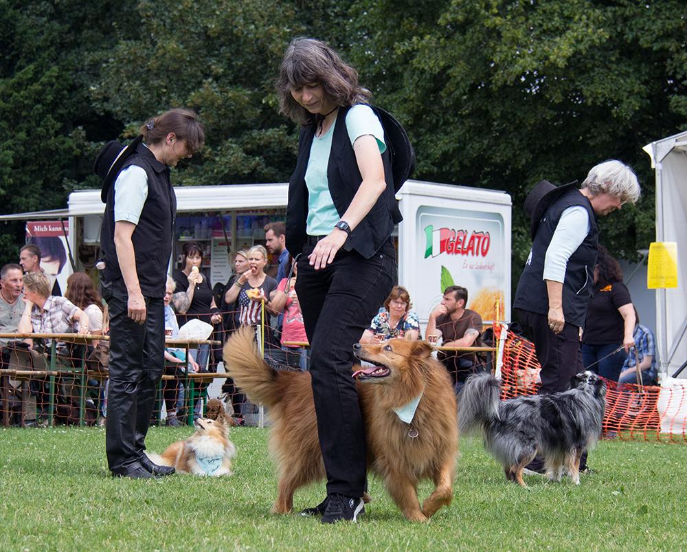Dog Dance. Foto von Lara