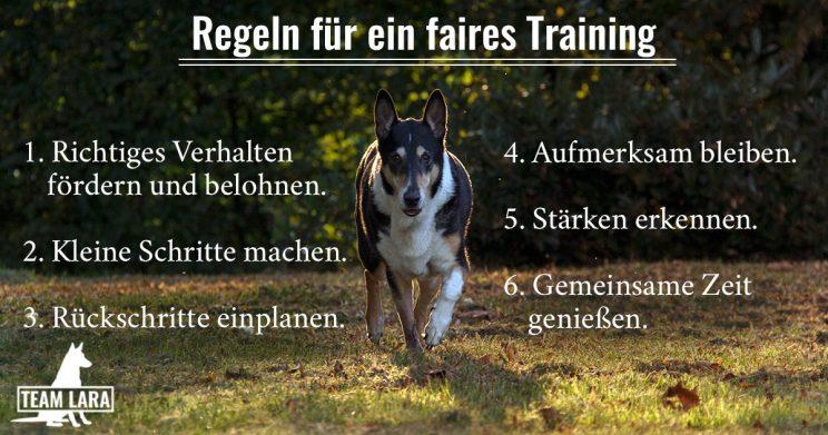 Regeln für ein faires Training