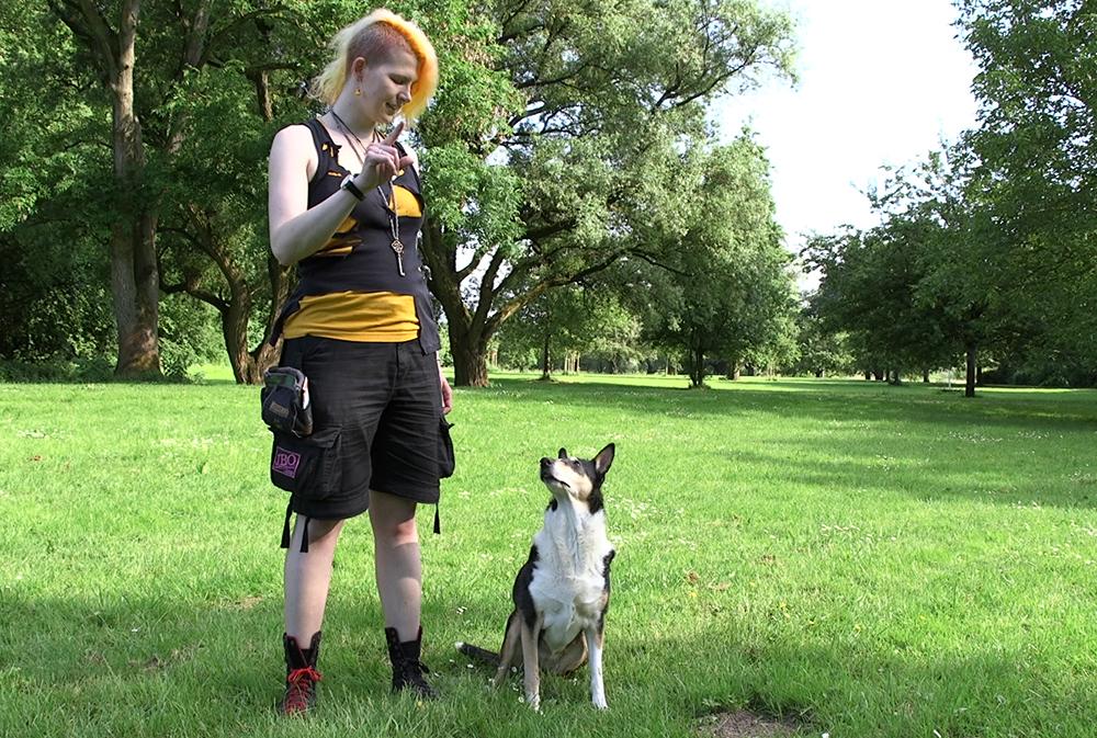 Lara Dresscode