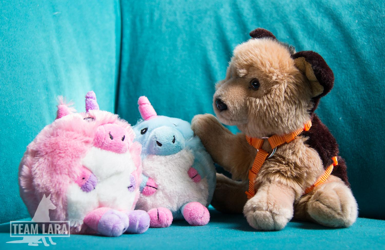 Rex und zwei flauschige Schweinhörner