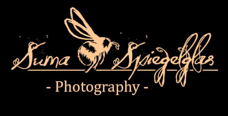 Suma Spiegelglas Photography